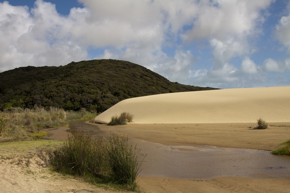 te_paki_dunes